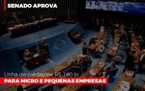 Senado Aprova Linha De Crédito De R$190 Bi Para Micro E Pequenas Empresas - Contabilidade em Palmas