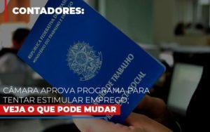Camara Aprova Programa Para Tentar Estimular Emprego Veja O Que Pode Mudar - Contabilidade em Palmas