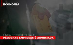 Linha De Credito Para Pequenas Para Pequenas Empresas E Anunciada - Contabilidade em Palmas