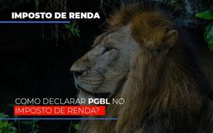 Ir2020:como Declarar Pgbl No Imposto De Renda - Contabilidade em Palmas