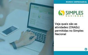 Veja Quais Sao As Atividades Cnaes Permitidas No Simples Nacional - Contabilidade em Palmas