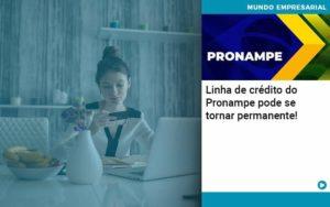 Linha De Credito Do Pronampe Pode Se Tornar Permanente - Contabilidade em Palmas